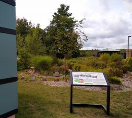 Mabb's Vein interpretative sign with garden in background