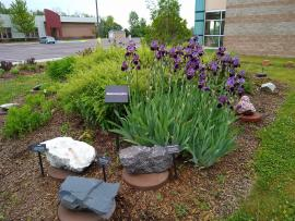 Metamorphic rock garden area.
