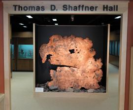 Entrance to the Thomas D. Shaffner exhibit hall with view of large sheet of native copper from the White Pine Mine, Michigan