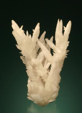 Calcite, El Potosi Mine, Chihuahua, Mexico. An unusual group of spiky calcite crystals. Donor: J. Hatch. Specimen 7.5 cm tall. Photo by G. Robinson. (DM 24868)