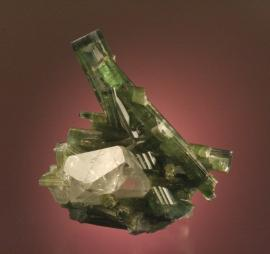Elbaite, attributed to the Cruzeiro Mine, Minas Gerais, Brazil. An attractive specimen of translucent green crystals on quartz. Donor: M. Zinn. Specimen 10 cm tall. Photo by G. Robinson. (DM 23551)