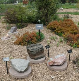 Igneous rocks in the Phyllis and John Seaman Garden - June 2017