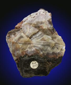 Agate, Keweenaw Point, Keweenaw County, Michigan. Donor: Douglass Houghton. Specimen 9 cm tall. Photo by C. Stefano. (UM9814)