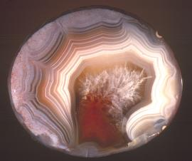 Agate, bottomlands of Lake Superior off Keweenaw Point, Keweenaw County, Michigan. Collected by diver Bob Barron. Donor: members of the A. E. Seaman Mineral Museum. Specimen 5.5 cm wide. Photo by J. Jaszczak. (DM 25600)