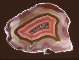 Agate, Idar-Oberstein, Germany. A colorful agate from one of the World's most famous agate localities. Donor: D. C. Gabriel. Specimen 12 cm wide. Photo by G. Robinson. (DCG 355)