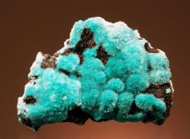 Aurichalcite, 79 Mine, Hayden, Arizona. A superb specimen of delicate aurichalcite crystals on matrix. Specimen 7.5 cm wide. Photo by G. Robinson. (DM 25025)