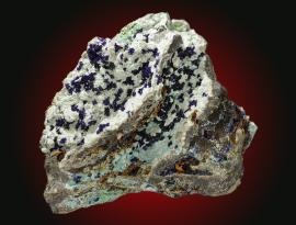Azurite, Tintic district, Utah. Small azurite crystals on pale blue chalcoalumite. Specimen 11 cm wide. Photo by C. Stefano. (UM11792)