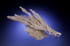 Quartz var. Chalcedony, Emery Co., Utah. Odd and beautiful chalcedony stalactitic growth. Specimen 18 cm across. Photo by M. Schorr. (UM 9838)
