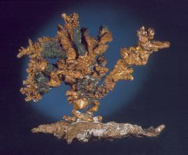 "Copper, Central Mine, Keweenaw County, Michigan. A perfect ""bonsai tree"" of copper crystals on a matrix of native copper. From the collection of J. T. Reeder. Specimen 11 cm wide. Photo by G. Robinson. (JTR 669)"
