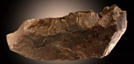 Copper, Ontonagon River, Ontonagon County, Michigan. A piece of the famous Ontonagon Boulder collected by Douglass Houghton and noted that it was deposited at the University of Michigan. Donor: Douglass Houghton. Specimen 17.8 cm across. Photo by C. Stefano (UM 1573)