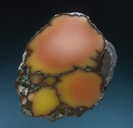 Datolite, Mesnard Mine, Houghton County, Michigan. A rare datolite nodule with colors zoning from the more common red to the much rarer yellow. Specimen 8 cm tall. Photo by J. Jaszczak. (DM 1489)