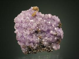 Fluorapatite, Rapid Creek, Yukon, Canada. A fine crystal group of purple apatite from Rapid Creek. From the Patrick Collins collection, one of the most well-documented and comprehensive collection of minerals from Rapid Creek. Specimen 3.5 cm across. Photo by G. Robinson. (DM 27753)