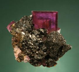 Fluorite, Sphalerite, Annabel Lee Mine, Hardin County, Illinois. A beautiful color-zoned fluorite crystal on sphalerite crystals from the famous southern Illinois fluorospar district. Specimen 6.5 cm across. Photo by G. Robinson. (DM 19854)
