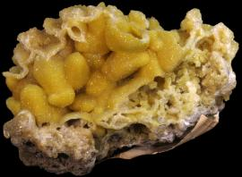 Hemimorphite after calcite, Joplin, Missouri. A beautiful and rare specimen from the earliest mining at the Joplin Pb-Zn district. Donor: J. C. Cooper. Specimen 8 cm across. Photo by C. Stefano. (UM 4072)