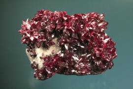 "Proustite, Dolores Mine, Chanarcillo, Chile. Miners called proustite and related minerals were called ""ruby silver"" by miners because of their intense color. Like many silver minerals, proustite is light sensitive and continued exposure to light will darken it to black, making this specimen next to impossible to exhibit. Specimen 10 cm wide. Photo by G. Robinson. (DM 23880)"