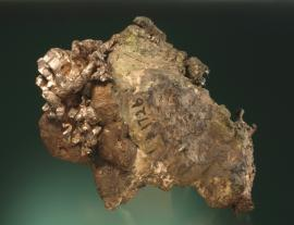 "Silver and copper, North Kearsarge Mine, Houghton County, Michigan. ""The Buffalo"" is one of the museum's most recognizable specimens. It features some of the largest crystals of silver known from the district on crudely crystallized copper. From collection of J. T. Reeder. Specimen 18 cm wide. Photo by G. Robinson. (JTR 1726)"