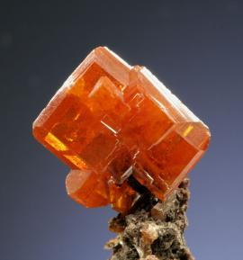 Wulfenite, Red Cloud Mine, La Paz Co., Arizona. A sharp, orange-red crystal of wulfenite from one of the premier localities for the species. Donor: D. C. Gabriel. Specimen 2 cm tall. Photo by G. Robinson. (DCG 8)