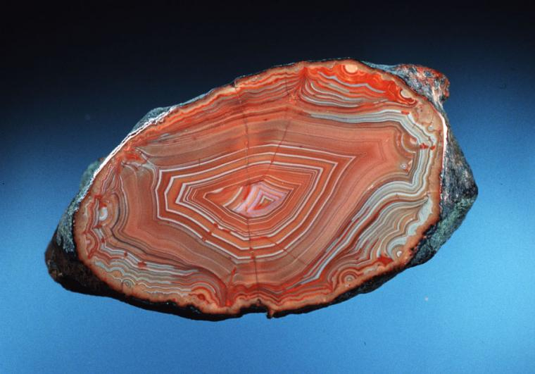 Lake Superior agate collected underwater by diver Bob Barron off Keweenaw Point, Michigan (DM25605). Specimen 6 cm across. Photo by J. Jaszczak. Donated by